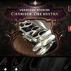 Chamber Orchestra 2 - Go Edition