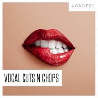 CSVCC26 Vocal Cut 128bpm - Fm