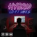 Hybrid Lo-fi Vibes