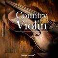 13 Violin CV1 19 - 110 BPM - G