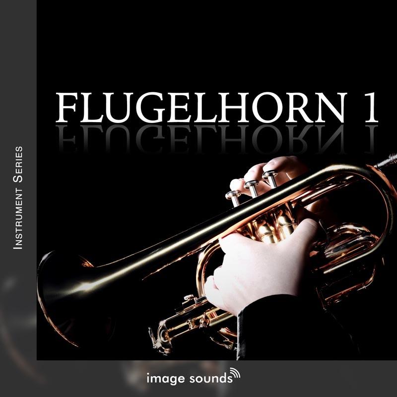 Flugelhorn 1