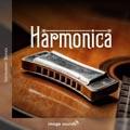 09 Harmonica HC1 22 - 120 BPM - C
