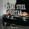 09 Pedal Steel Guitar PS1 04 - 70 BPM - C
