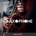 18 Saxophone SX1 14 - 125 BPM - Em