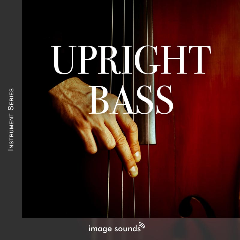 Upright Bass 1