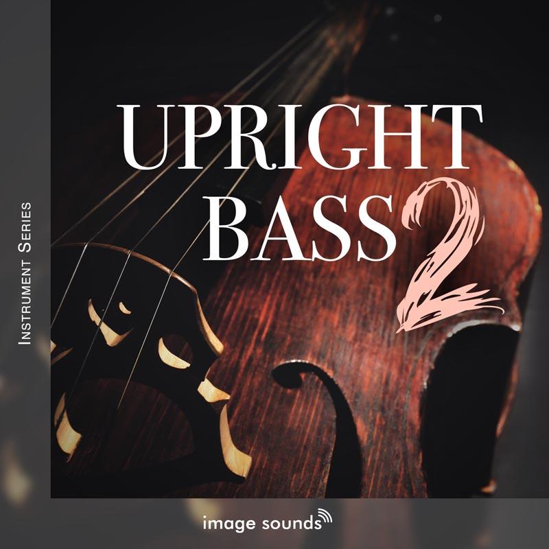 Upright Bass 2