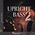 47 Upright Bass UB2 19 - 126 BPM - F#