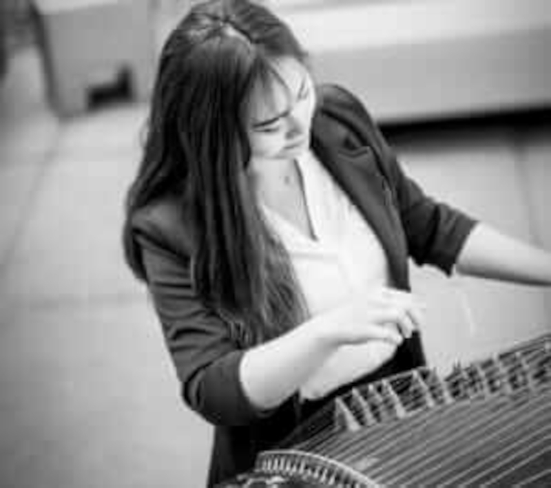 Supporting image for Plectra Series 5: Guzheng