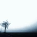 Freeze - Infinite Blur - Ableton