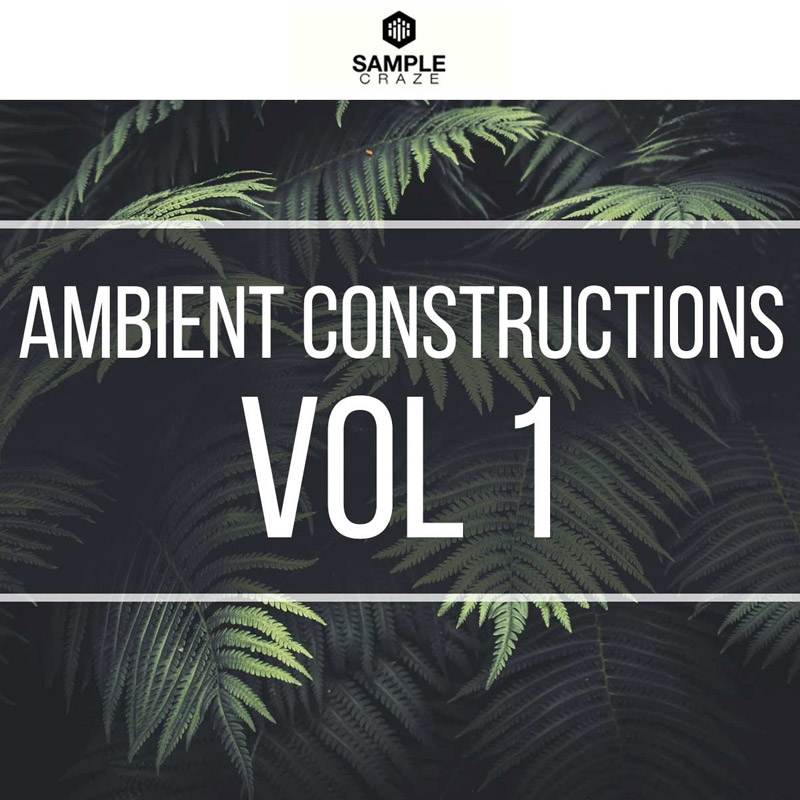 Ambient Constructions 1