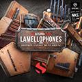 Hopkin Instrumentarium: Lamellophones