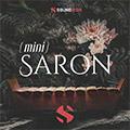 Mini Saron