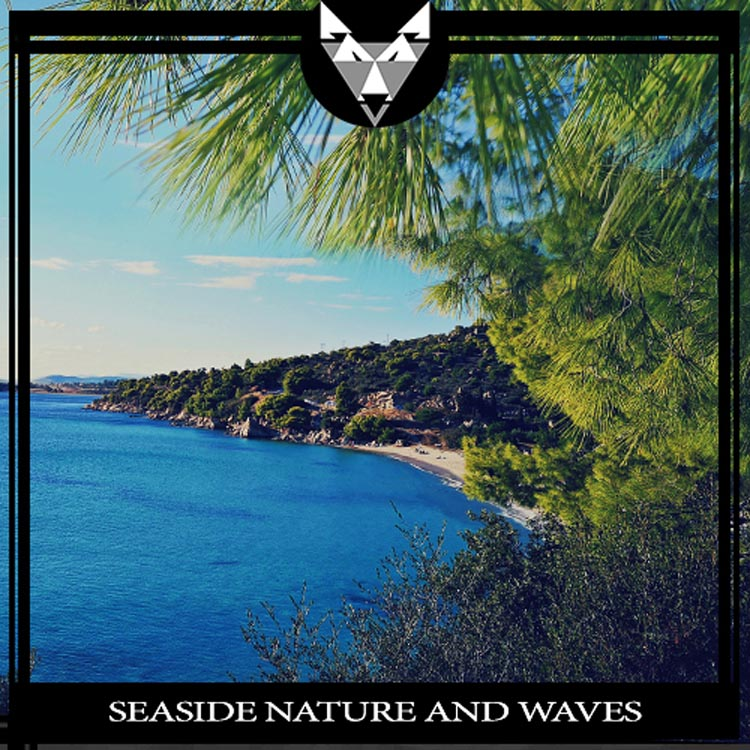 Seaside Nature And Waves
