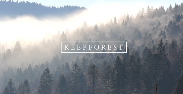 Keepforest2