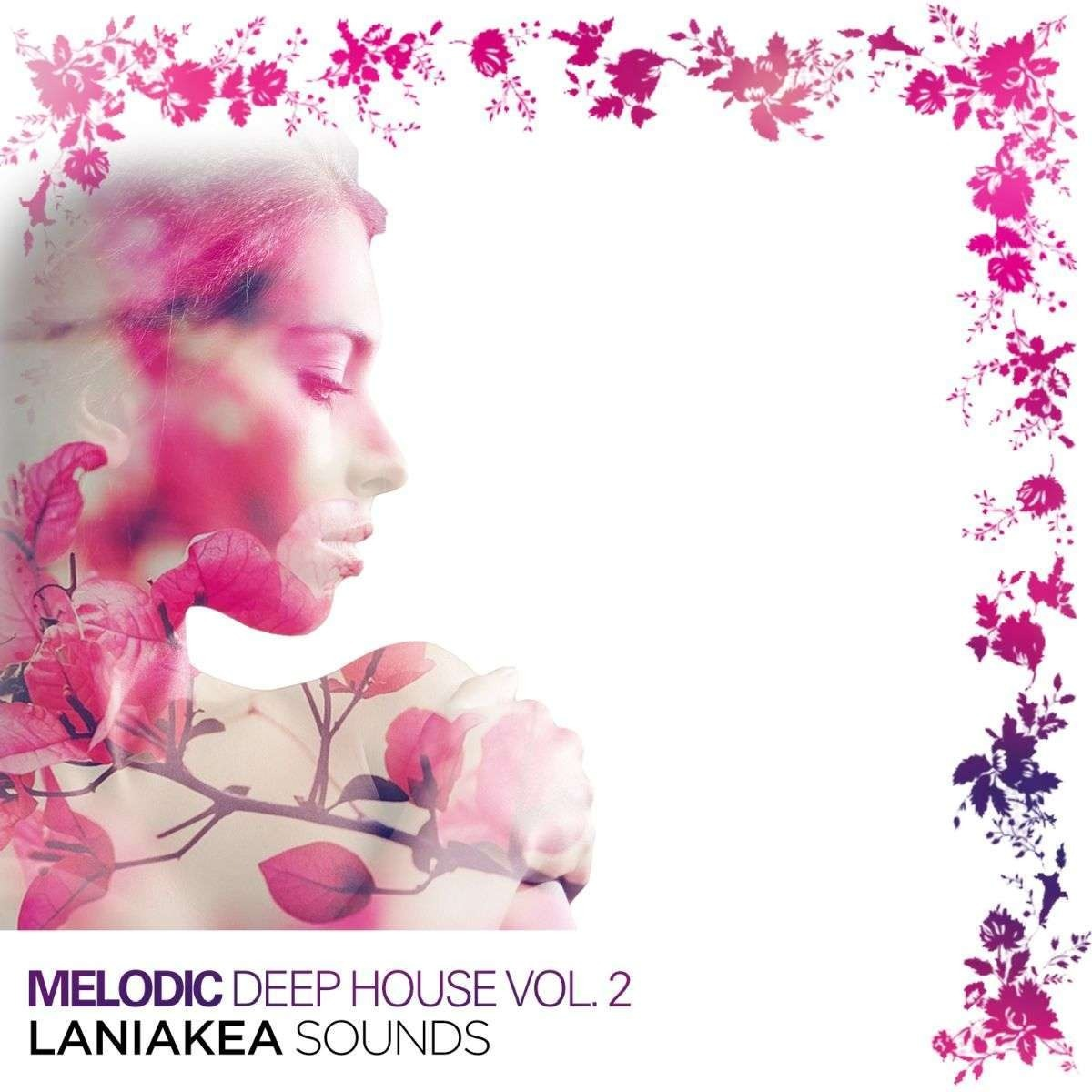 Melodic Deep House Vol 2